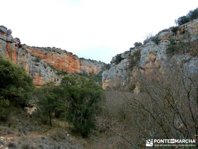 Hoces y cañones del Río Piedra y del Río Gallo -- Laguna Gallocanta - fines de semana;entrenamien